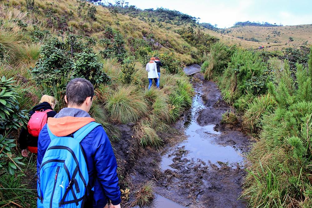 ihamac_hiking5